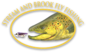 Stream and Brook Fly Fishing