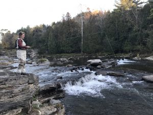 Vermont fly fishing trout salmon pike for Vermont fishing report